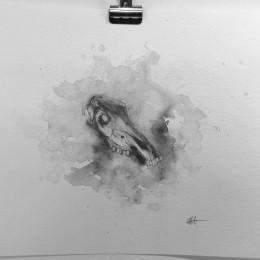Seldon Hunt - Skull Study 3